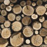 木林学のことはじめ